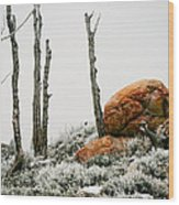 Red Rock Frost - Green Mountain - Wyoming Wood Print