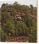 Red Rock Green Forest No3 Wood Print