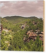 Red Rock Green Forest No2 Wood Print