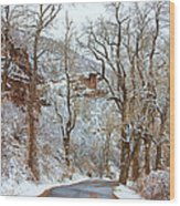 Red Rock Winter Road Portrait Wood Print by James BO  Insogna