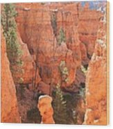 Red Rocks - Bryce Canyon Wood Print