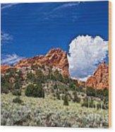 Red Rocks In Colorado Wood Print