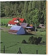 Red Roofed Barn Chiloe Island Wood Print by Craig Lovell