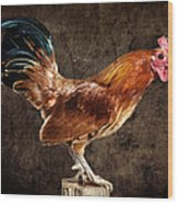Red Rooster On Fence Post Wood Print