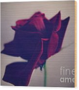 Red Rose Abstract Wood Print