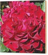 Red Rose Art Prints Big Roses Floral Wood Print