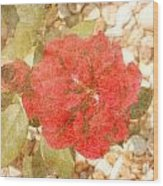 Red Rose At Noon Wood Print