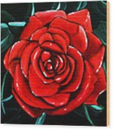 Red Rose In Black And White Wood Print