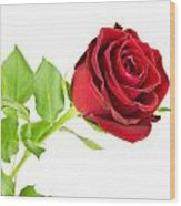 Red Rose On White Wood Print