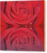 Red Rose Reflects Wood Print
