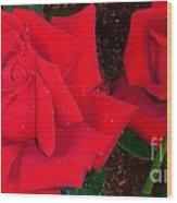 Red Rose Twins  Wood Print