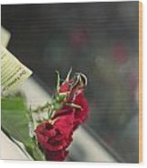 Red Roses And Visitor Wood Print