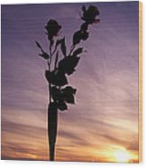 Red Roses At Sunset Wood Print