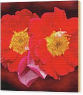 Red Roses Heart Wood Print