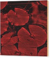 Red Ruby Tuesday Wood Print