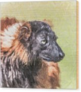 Red-ruffed Lemur Wood Print