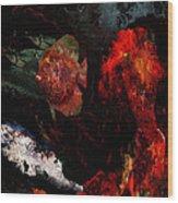 Red Ruffy Wood Print