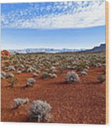 Red Sand In The Mojave Wood Print