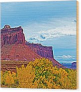 Red Sandstone Formations Going Into Needles District Of Canyonlands National Park-utah Wood Print