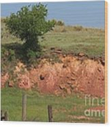 Red Sandstone Hillside With Grass Wood Print