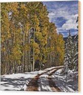 Red Sandstone Road In October Wood Print