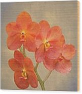 Red Scarlet Orchid On Grunge Wood Print by Rudy Umans