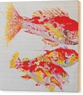 Red Snapper Family Painted Wood Print