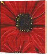 Red Spectacular- Red Gerbera Daisy Painting Wood Print