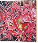 Red Spider Lily Flower Painting Wood Print