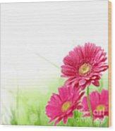 Red Spring Flowers Wood Print