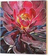 Red Succulent Plant Wood Print