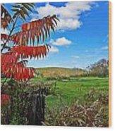 Red Sumac Field Wood Print