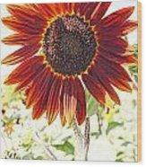 Red Sunflower Glow Wood Print