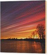 Red Swoosh Wood Print