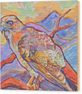 Red Tail Visit Wood Print