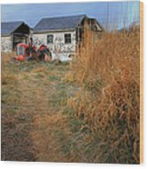 Red Tractor 5 Wood Print