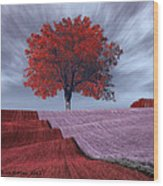Red Tree In A Field Wood Print