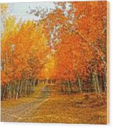 Red Tree Rd Wood Print