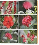 Red Tropicals Collage Wood Print