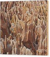 red Tsingy Madagascar 2 Wood Print