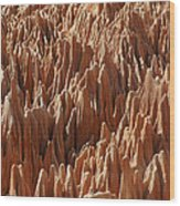 red Tsingy Madagascar 3 Wood Print