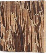 red Tsingy Madagascar 5 Wood Print