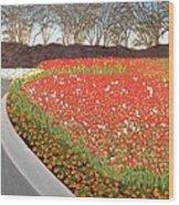 Red Tulip Garden Wood Print