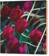 Red Tulip River Wood Print