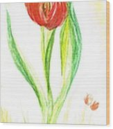 Red Tulip -of Amsterdam   Wood Print