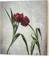 Red Tulips On A Letter Wood Print