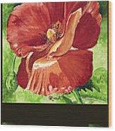 Red Vibrations Poppy Wood Print
