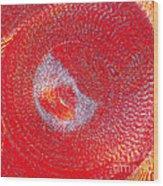 Red Whirlpool Wood Print