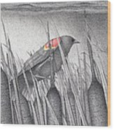 Red-winged Blackbird Wood Print by Wayne Hardee