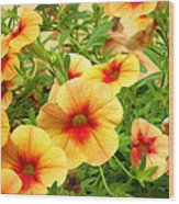 Red Yellow Morning Glories Wood Print